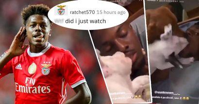 Benfica-Star lässt Hunde die Innenseite seines Mundes lecken - er teilt diese Clips auf Instagram