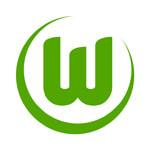Wolfsburg U19 - logo