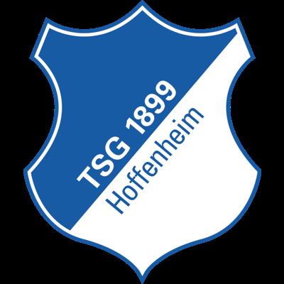 Hoffenheim - logo