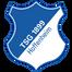 Хоффенхайм - logo